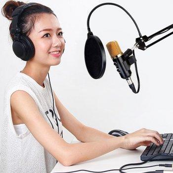 Студійний мікрофон Music D. J. M800U зі стійкою і поп-фільтром Black/Gold