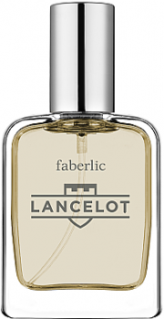 Мужская парфюмерия Туалетная вода Faberlic Lancelot man edt 100ml (4690302416607)