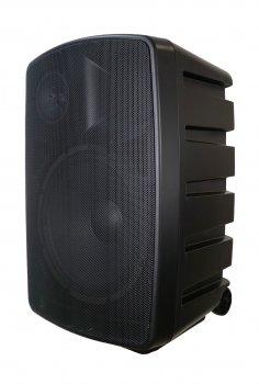 Активная акустическая система Clarity MAX15F3