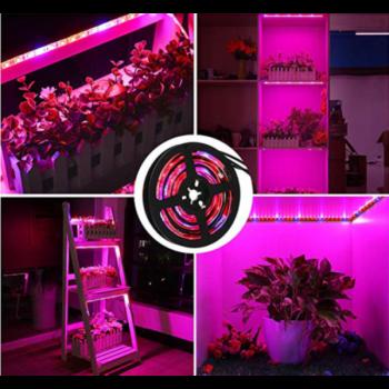 Світлодіодна Ультрафіолетова LED фіто-стрічка світлодіодний фіто-світильник Фіто Лампа 5м/300 світлодіодів