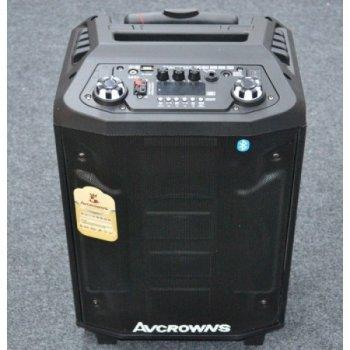 Портативна колонка-валіза Bluetooth AFG P100 Premium (52x34x31 см), чорна, акустика, акустична система, музичний центр, Bluetooth ( блютус), для будинку, дачі, кафе, природи, акумуляторна СИСТЕМА КАРАОКЕ З МІКРОФОНОМ