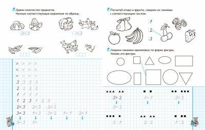Математические прописи. Синяя графическая сетка - Федиенко В. (9789664295618)