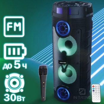 Портативна Bluetooth колонка Column 202 переносна і потужна з акумулятором + LED підсвічуванням + провідний мікрофон – Безпровідна USB музична акустична стерео система з FM радіо + AUX + microSD, блютуз для вулиці і вдома, Black