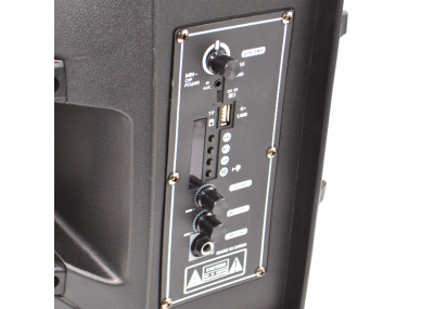 Портативна колонка UKC HS-008BT 8 дюймів акумуляторна з пультом ДУ + мікрофон + FM-радіо/слот USB і TF під карту Чорна (11713)