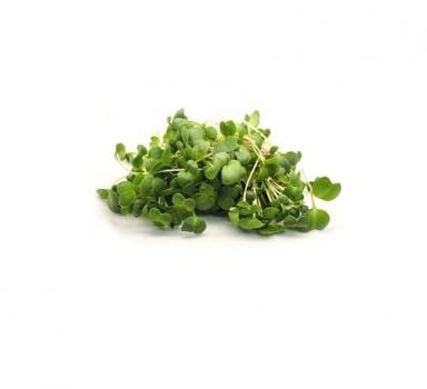 Мікрозелень Скайсмарт «Гірчиця» 50 г