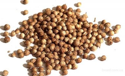 Коріандр зерно Східні спеції 1 кг
