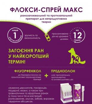 Препарат для лікування дерматиту БиоТестЛаб флоксi-спрей Макс 100 мл (4820190480422)
