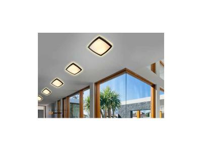 Вуличний світильник стельовий AZzardo FANO SQUARE AZ2186 (MAX-1316-DGR)