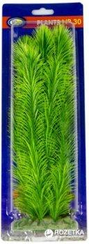 Искусственное растение Aqua Nova 30 см (NP-3030041)