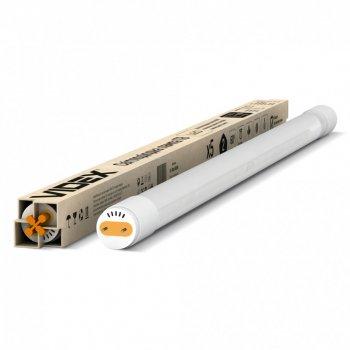Лампа світлодіодна Videx T8B (8 Вт) (AS 528911)