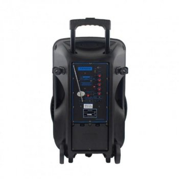 Потужна колонка А15-2 на акумуляторі з 2 мікрофонами Temeisheng