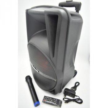 Акустическая система Ailiang аккумуляторная беспроводная Bluetooth колонка с радио микрофоном и встроенным сабвуфером комбик усилитель пульт Чёрная (AR-12)