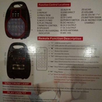 Акустична система Golon Bluetooth колонка комбо підсилювач з мікрофоном Чорна (RX-810)