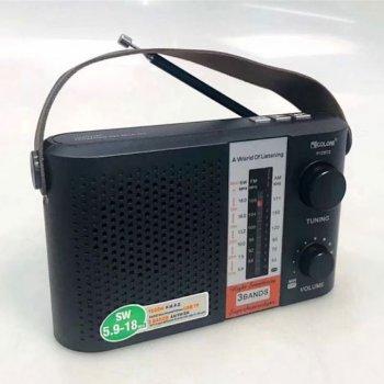Мини-радио R12BTS Golon T-SH57701