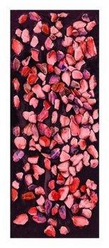 Чорний шоколад Delaviuda з фруктами 120 г (8410223607269)
