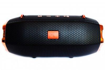 Портативна Bluetooth стерео колонка T&G Xtreme c USB і MicroSD Чорна (R13 Black)