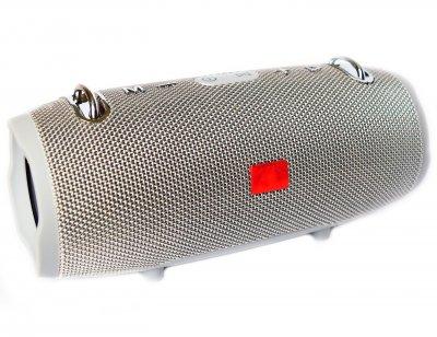 Портативна bluetooth стерео колонка колонка T&G Xtreme 2 mini Сіра (Xtreme 2 mini Grey)