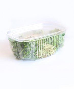 Мікрозелень мікс MR Green 100 г(30005)