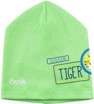 Демисезонная шапка Бемби SHP83 25083011624.600 50 см Зеленая (4823101630008)