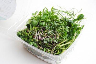 Набір мікрозелені на тиждень Користь 7+ Trava 350г