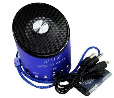 Колонка портативная WSTER WS-A9 с MP3, USB и FM-pадио Blue (flo1017)