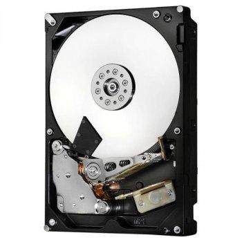 HGST Deskstar NAS 10 TB (H3IKNAS1000025672SWW/0S04037)