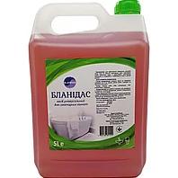 Бланидас - універсальне засіб для санітарних кімнат, 5 л