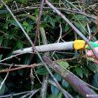 Пила садовая обрезная Gruntek Barrakuda 450/300мм (295500300) - изображение 6