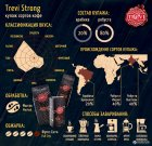 Кава в зернах Trevi Strong 1 кг (4820140050156) - зображення 2