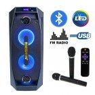 Акустическая система Temeisheng TMS-802 BT\SD\USB 2 караоке Беспроводных микрофона, Мощность 250 (223242421zag) - изображение 2