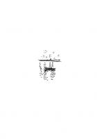 Дім, у якому жевріє світло - Ельчін Сафарлі (9786177764266) - изображение 14