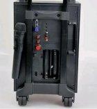 Портативная система GOLON RX-2900BT - изображение 3