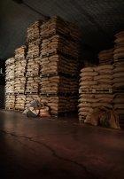 Кофе в капсулах Segafredo Espresso Per Te Decaffeinato 5.1 г х 10 шт (8003410333746) - изображение 6
