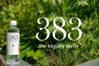 Упаковка минеральной негазированной воды 383 0,383л *12 бутылок 5999887276019 - изображение 7