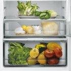Встраиваемый холодильник CANDY BCBF 192 F - изображение 8