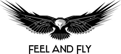 Feel and Fly